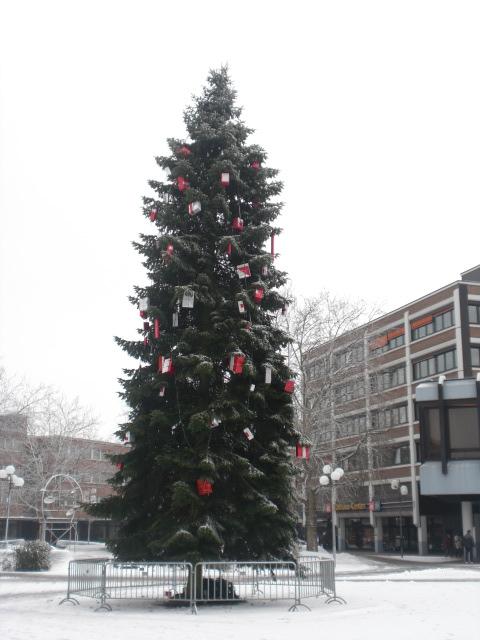 Weihnachtsbaum auf dem Rathausplatz der Stadt Kamp-Lintfort