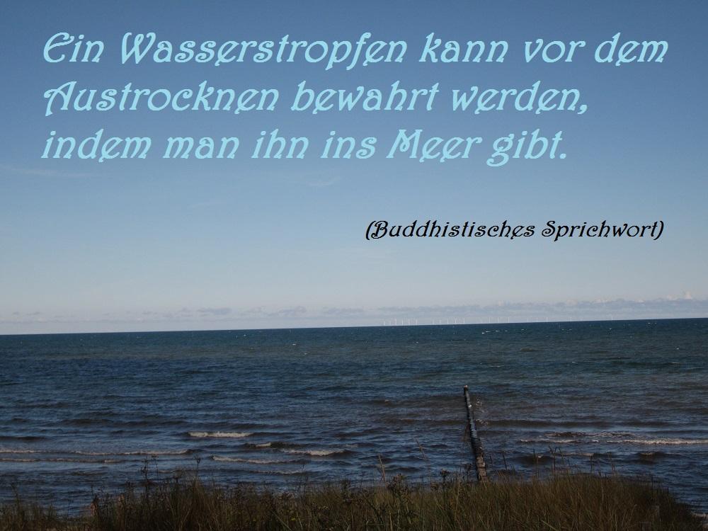 spruch-der-woche-wassertropfen-10-11-2016