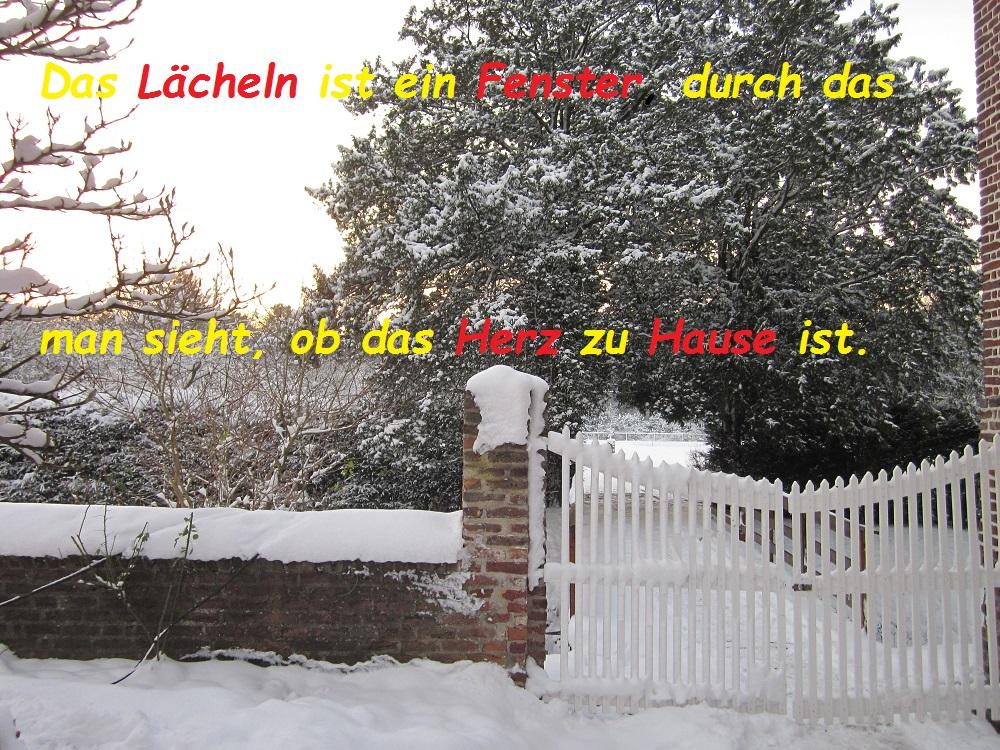 spruch-der-woche-15-12-2016-herz