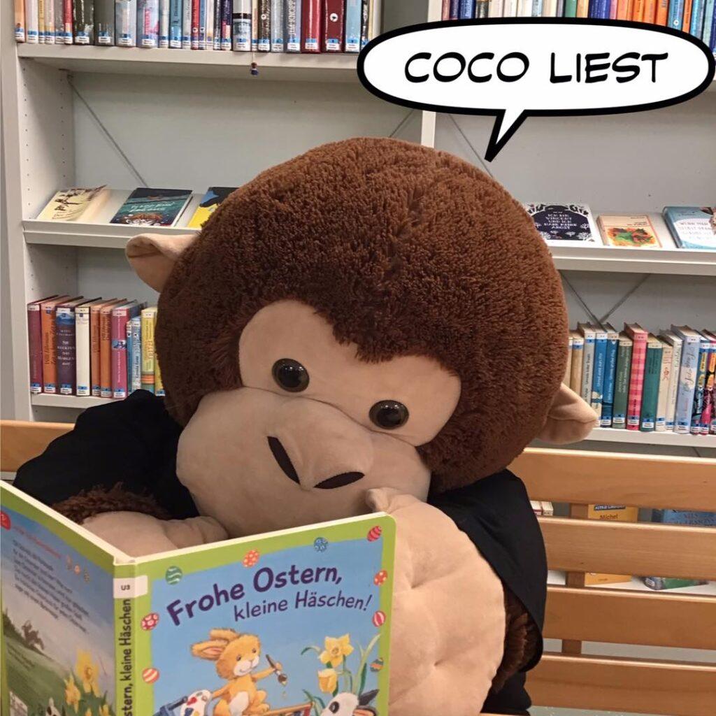Der Affe Coco liest ein Bilderbuch in der Mediathek