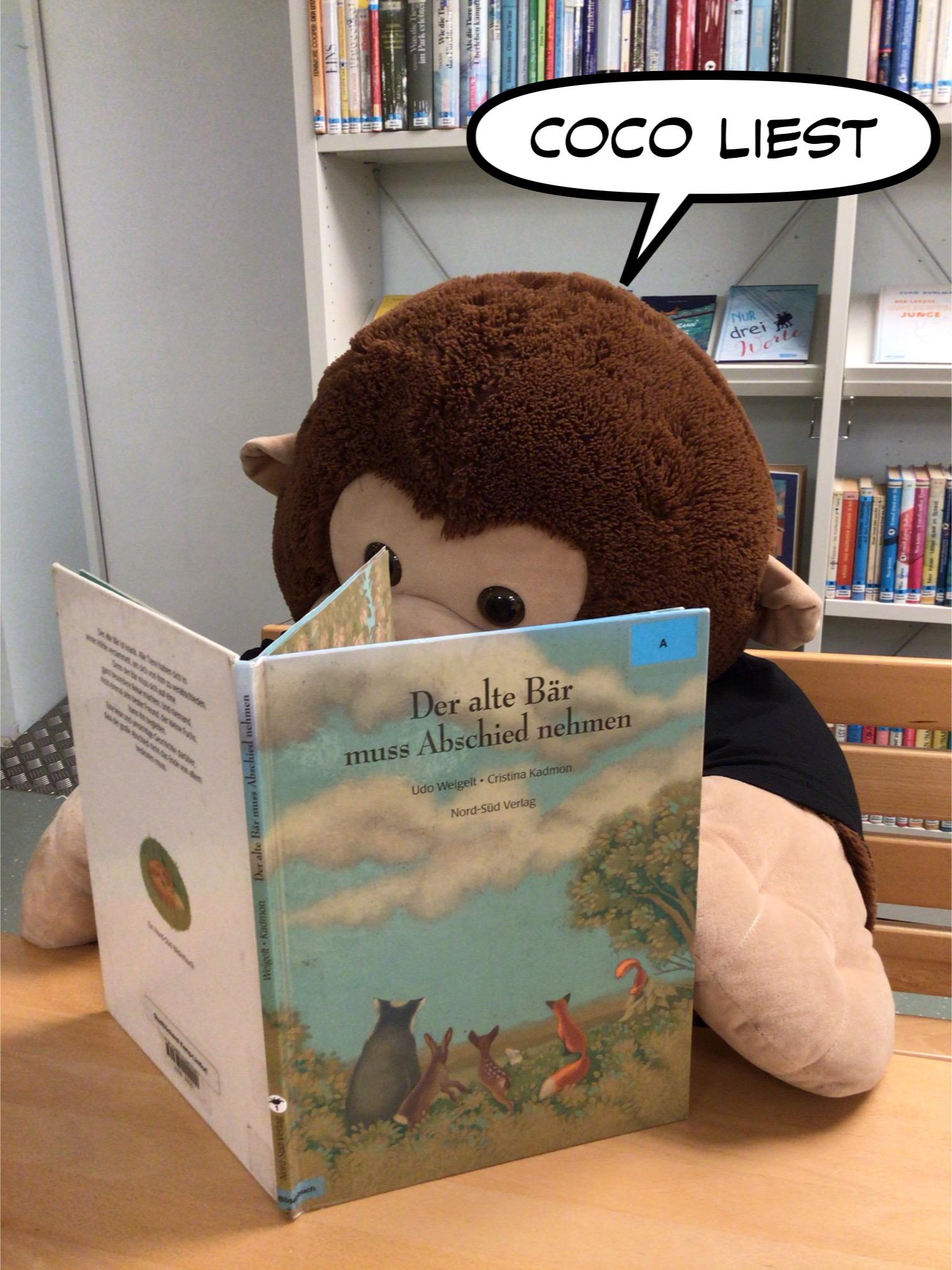 Coco der Affe, liest ein Bilderbuch