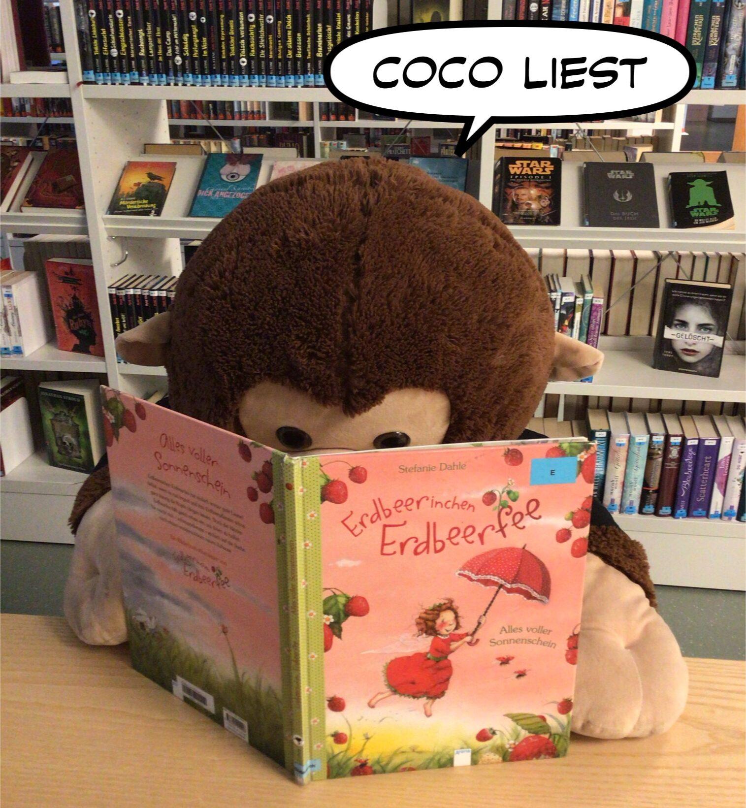 Der Affe Coco liest ein Bilderbuch